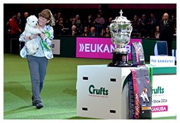 Press Photography - Crufts 2016